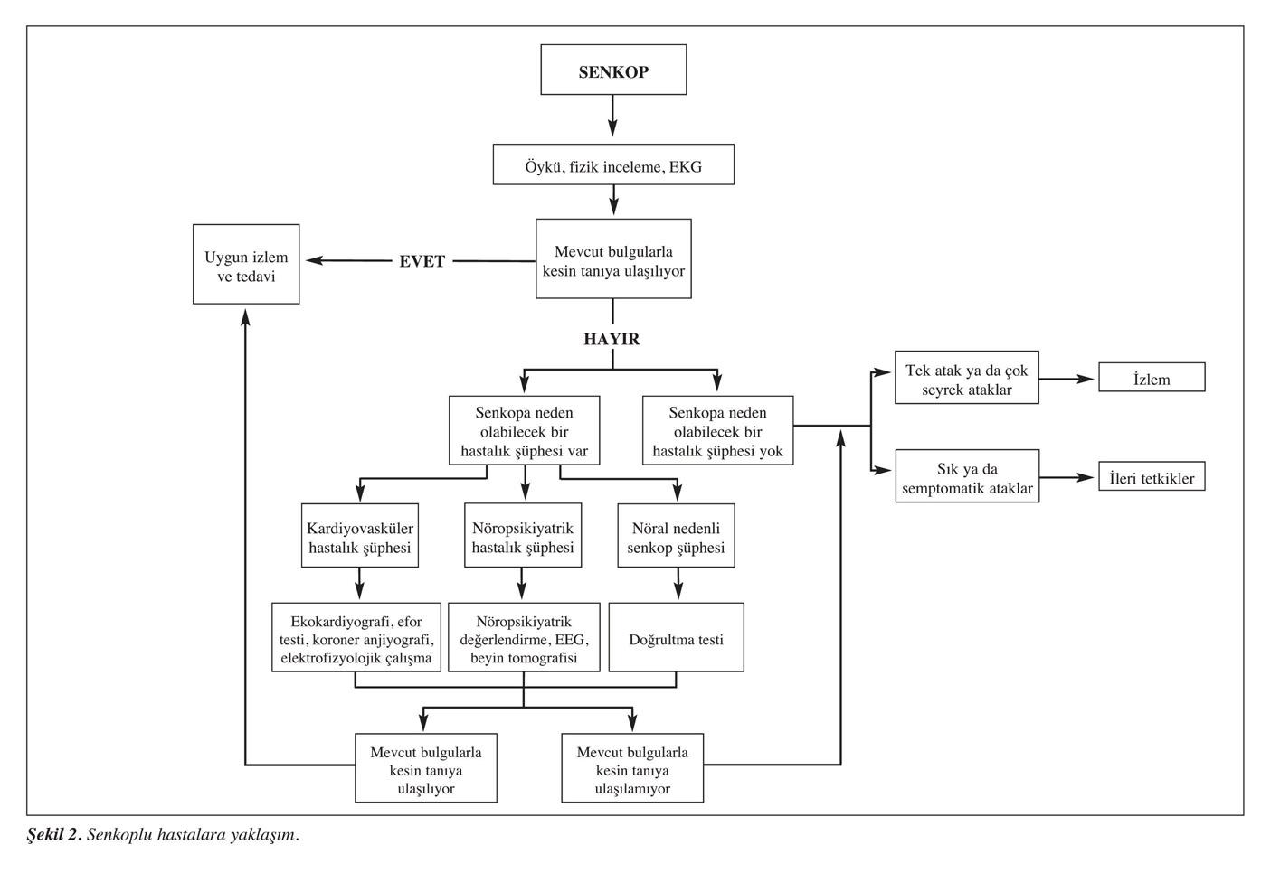 Senkop hastalığının tanı ve tetkikleri